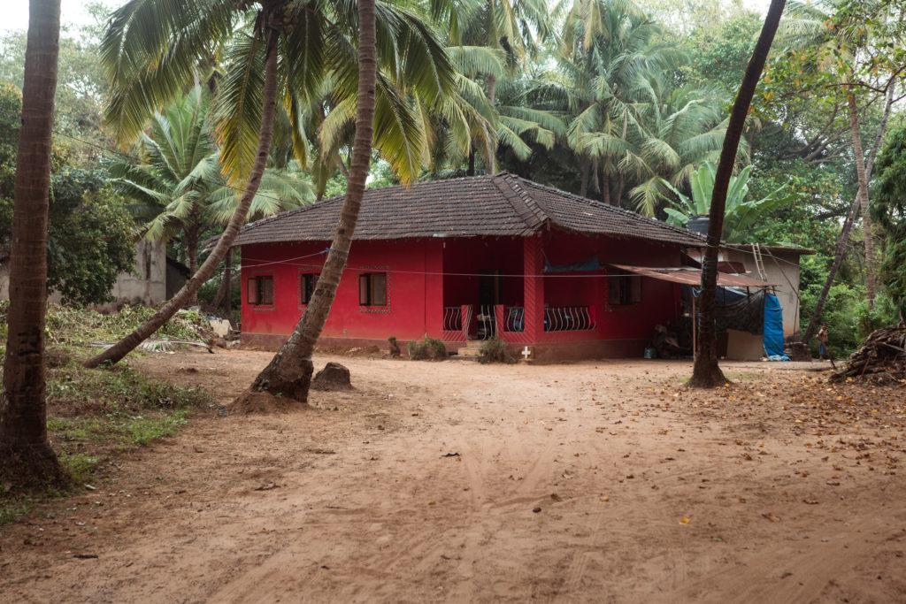 Farebný príbytok v pralese