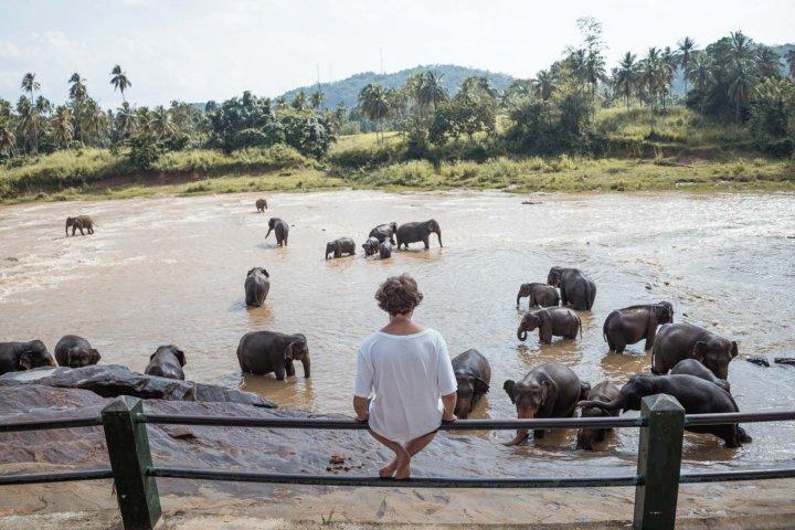 Srí Lanka 4
