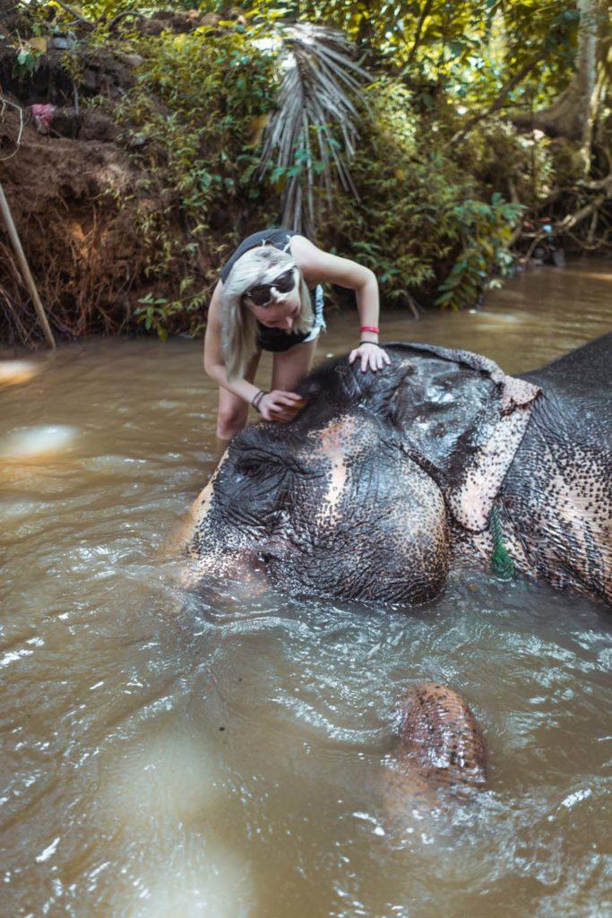 Sloní sirotinec neďaleko Kandy