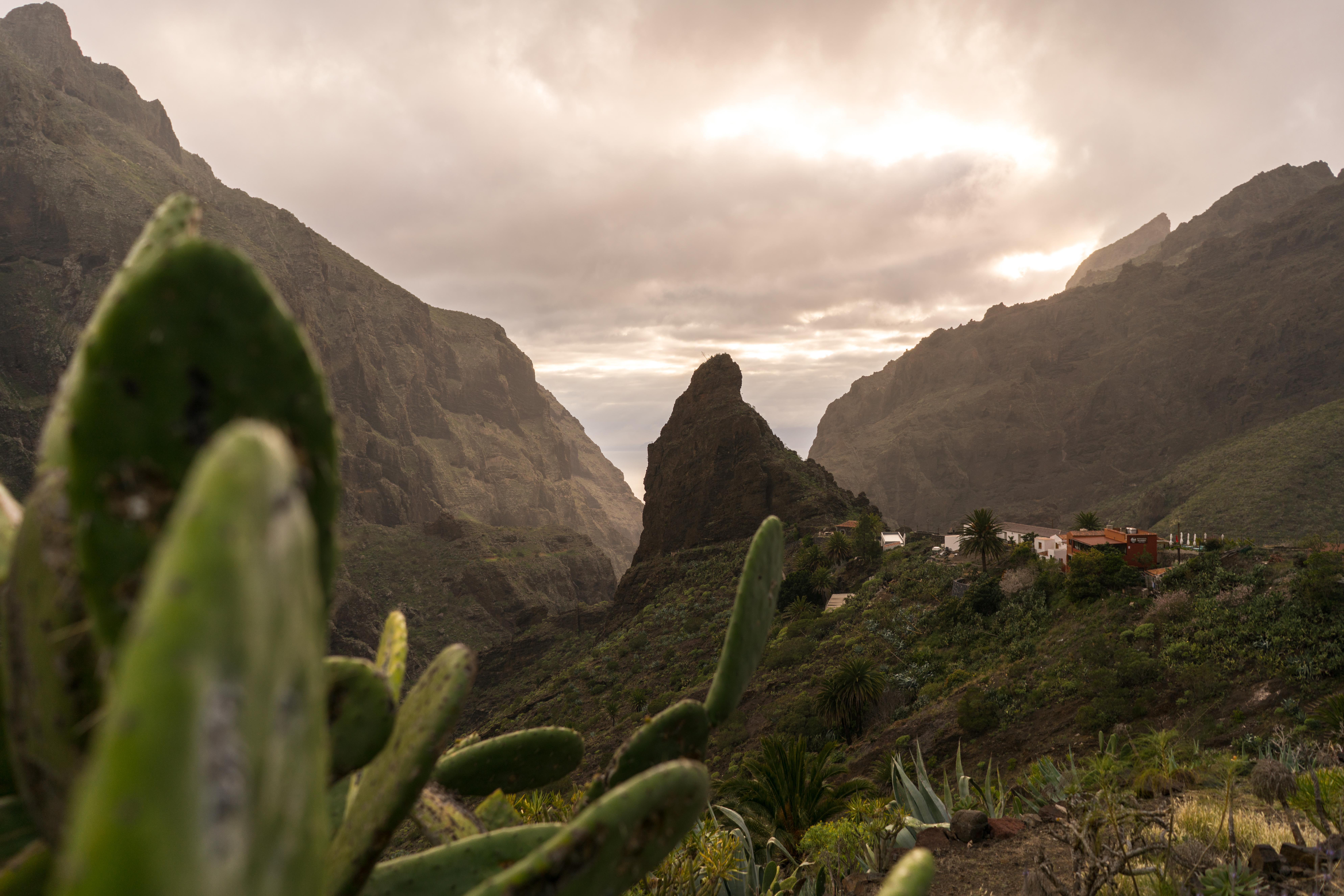 Dedinka Masca na Tenerife