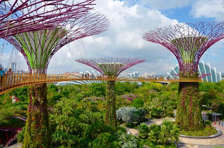 Supertrees – konštrukcie v tvare sci-fi stromov obrastené živými rastlinami