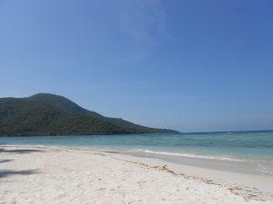 Karimunjawa je ostrov, respektíve sieť ostrovov, ktorá sa nachádza severne od ostrova Jáva v Jávskom mori.