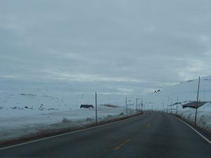 Nórsko a pohľad na okolie popri ceste.