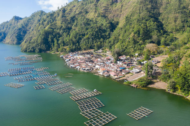 Dedina Trunyan - Pozostatky tiel v bambusových klietkach