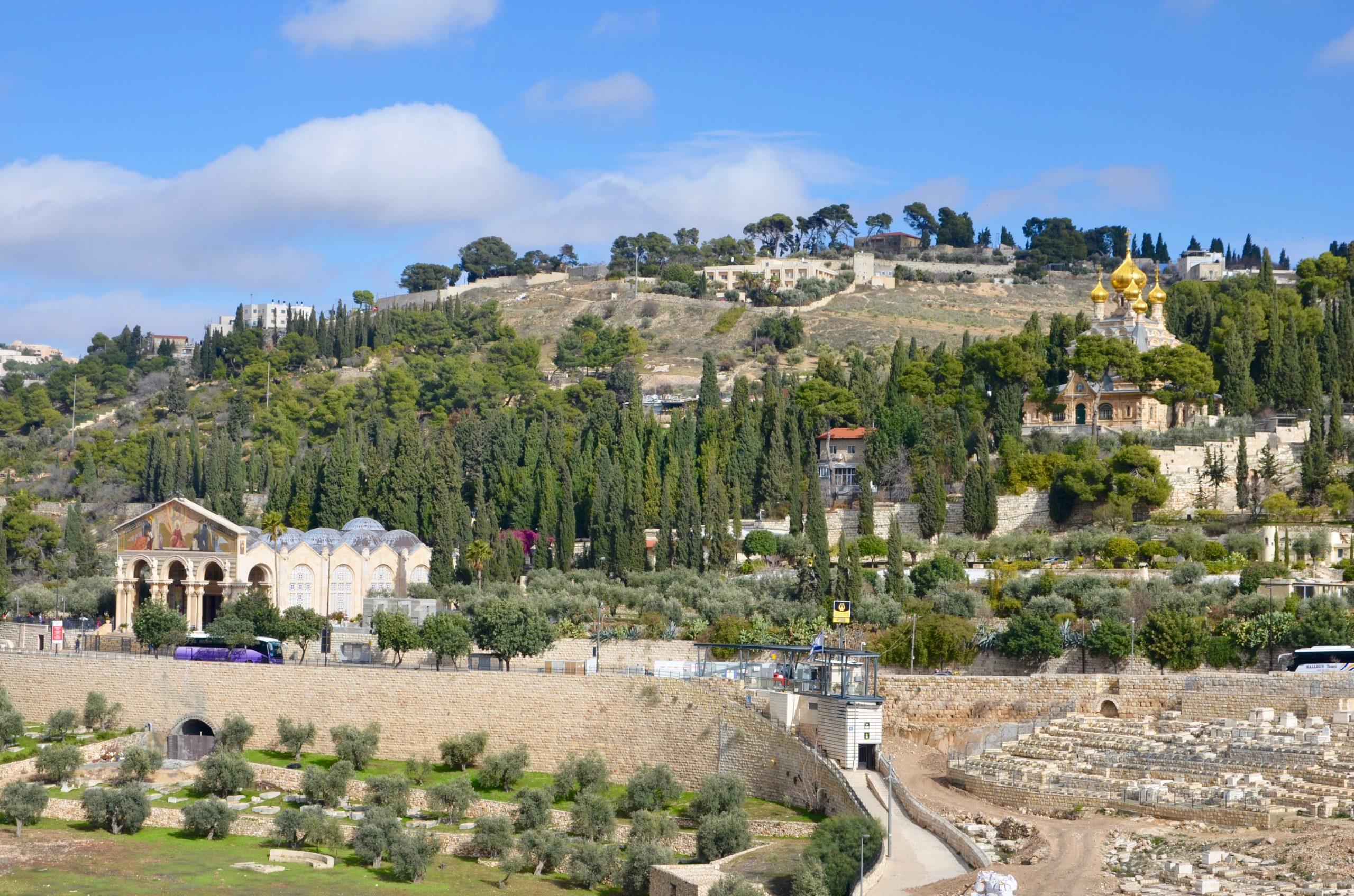 Jeruzalem - olivová hora