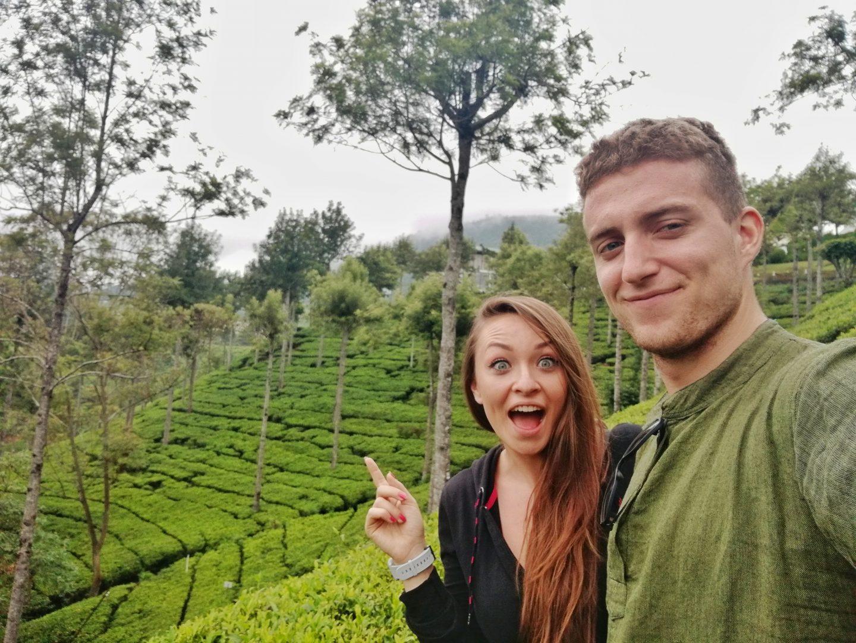 čajové plantáže na srí lanke