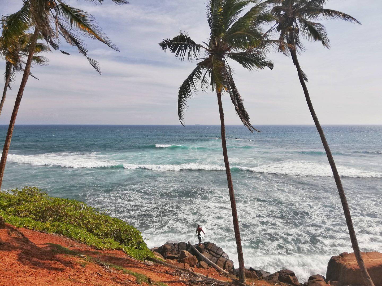 pláže, more a palmy na srí lanke